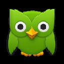 Duolingo Vocabulary Manager Chrome extension download