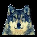 Jurawa Design Wolf - New Tab Extension Chrome extension download